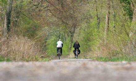 Seis propuestas de cicloturismo en plena naturaleza